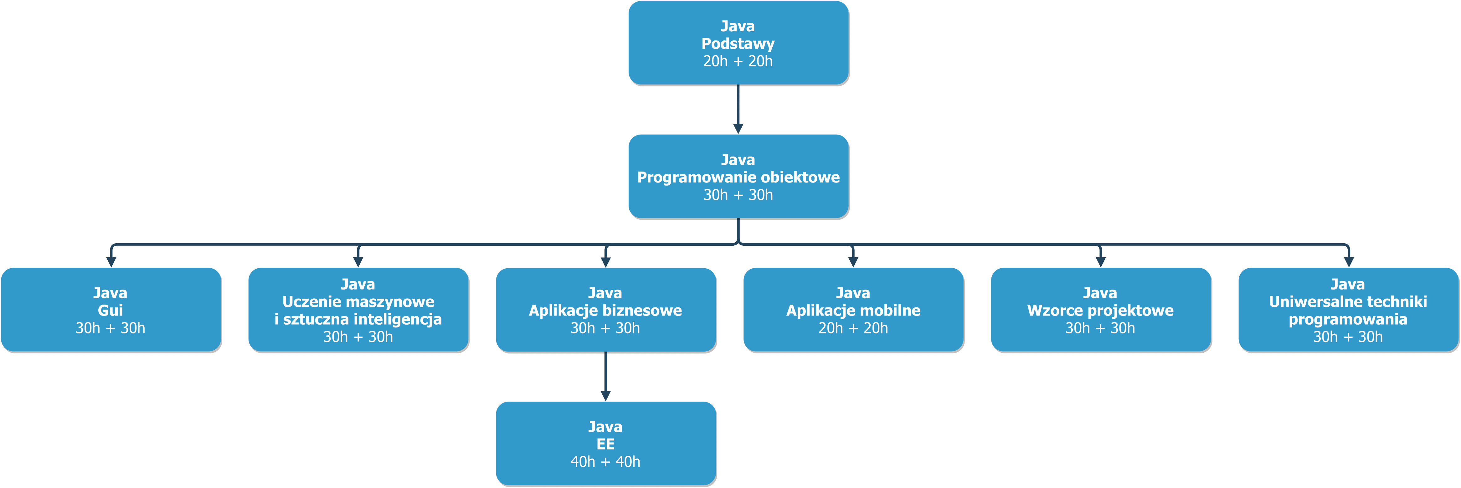 java_poziom